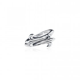 Prophecy Embrace ring -