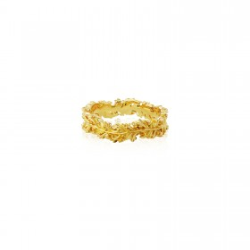 Raven Collector ring - 24 Karat Gold